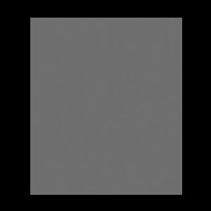 biesse group logo